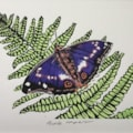 Purple emperor butterfly by Margaret Mallows