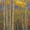 Quaking Aspens 30 x 15, oil on canvas, 600 x 289