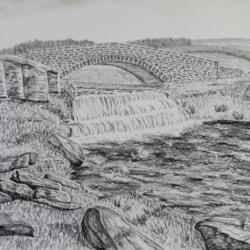 River Ure_3155