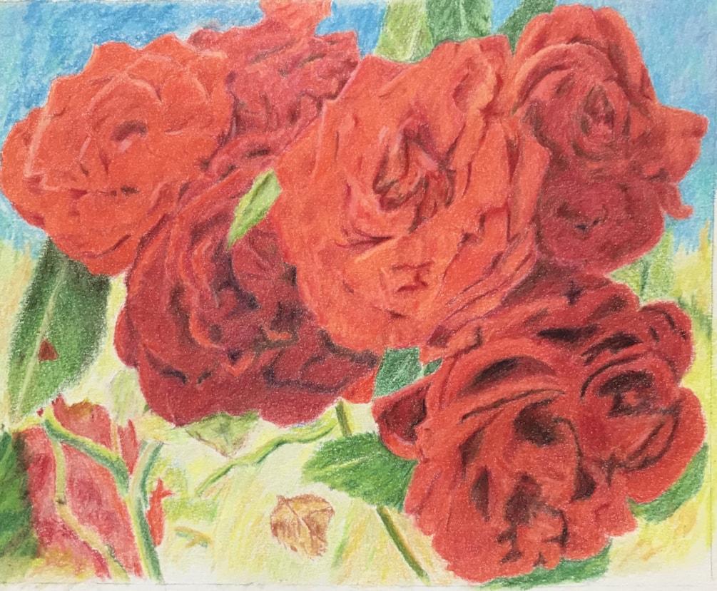 Roses IMG_2728