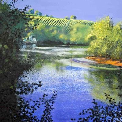 Sharpham Reach, River Dart_edited-2 copy
