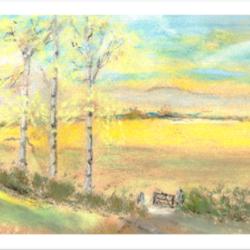 Silver Birch in the Landscape