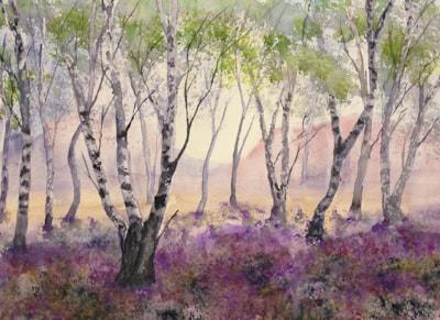 Silverbirch Woodlands 72dpi