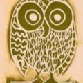 Single Small Owl Cropped 72dpi 10102020