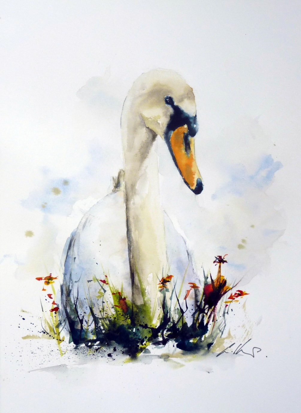 Sitting Swan, watercolour by Graham Kemp.
