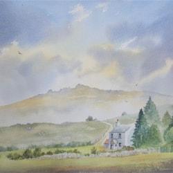 Small farm, Princetown, Dartmoor