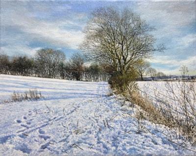 Snow Headland