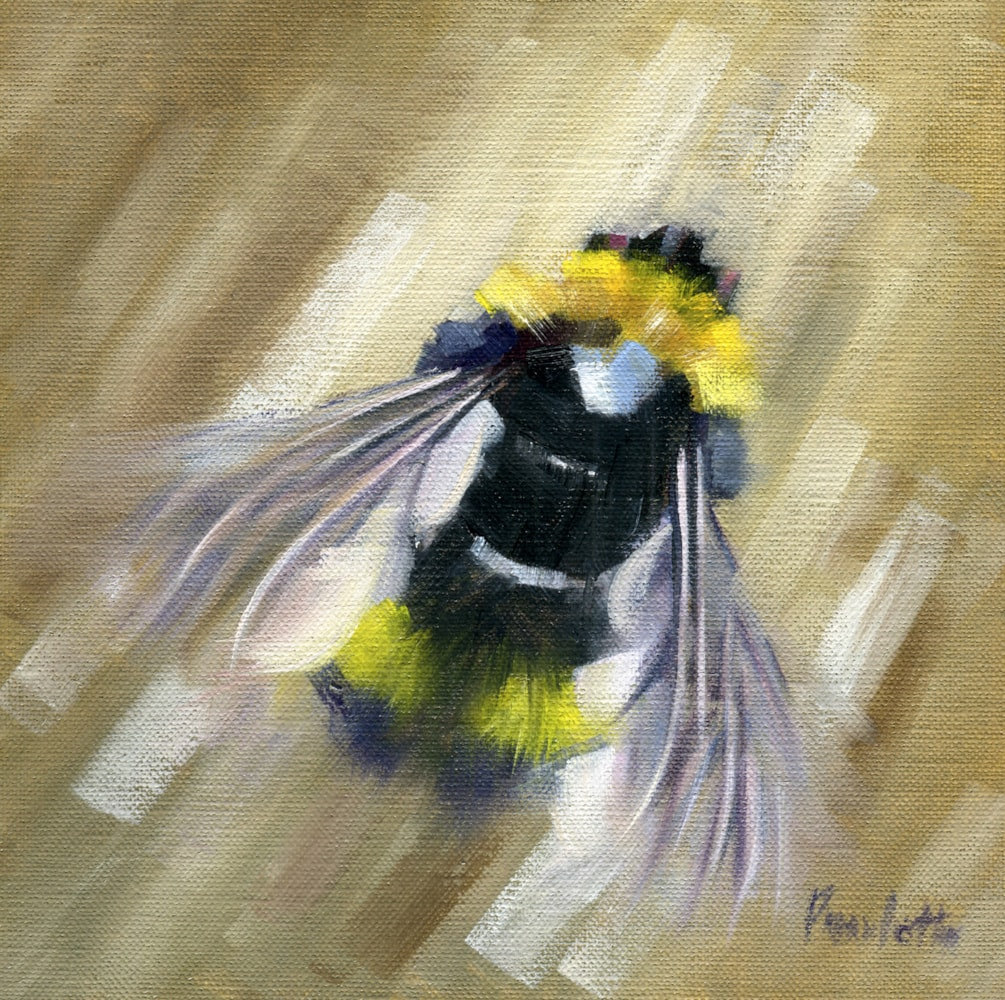 Spring Bee(2)