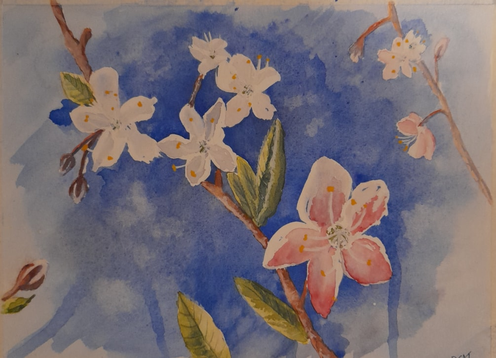Spring Blossoms_ exercise on studio.