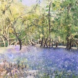 Spring in Wain Wood