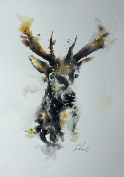 Stag, watercolour painting by Graham Kemp