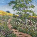 Sue Toft Artist - Nature's Way