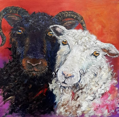 Sue Toft Artist- Sheep Study resized