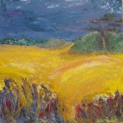 Sunlight on Corn field