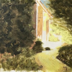 Sunlit Garden IMG_2110