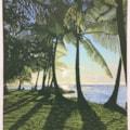 Sun, sea and shadows