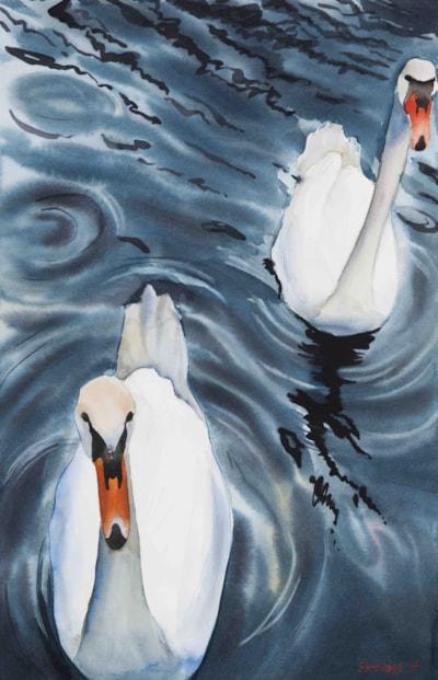 Swan Lake copy_light