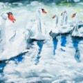Swans on the Saone '21-804177