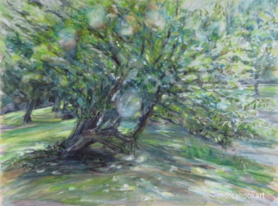 The Cranborne Tree ws