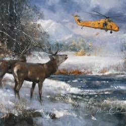 The Lifeline Red Deer and Wessex Scotland po