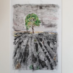 The Malham Tree - Mixed Media (Monoprint) - V1 with Mount