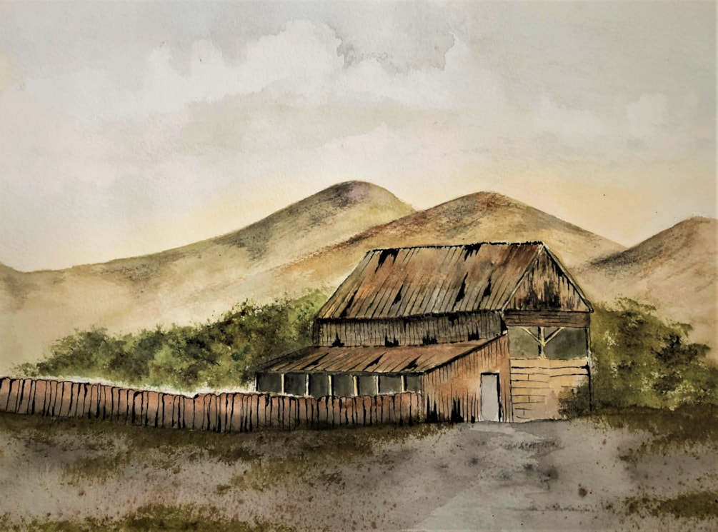 The old barn (3)