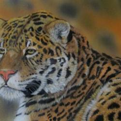 Thinking Jaguar