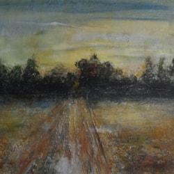 Track through barren field
