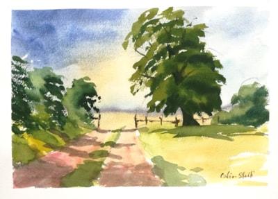 Tree and Hedges, Essex