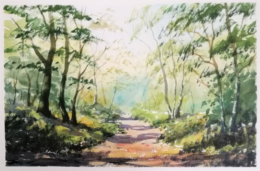 Trees, Galleywood Common