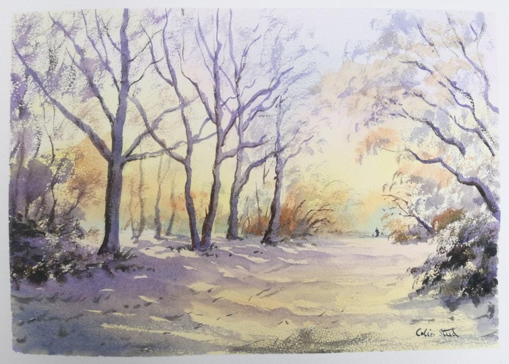 'Warm Winter Snow, Galleywood Common'
