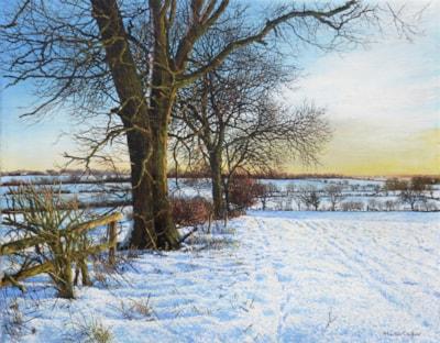 Warm Winter snow