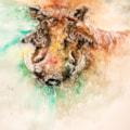 Warthog '21-1
