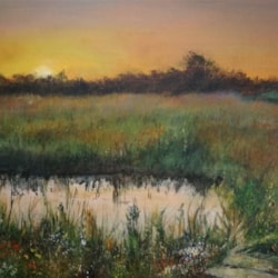 Water meadow at end od day