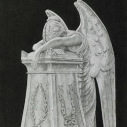 Weeping Angel - Black Background_3136