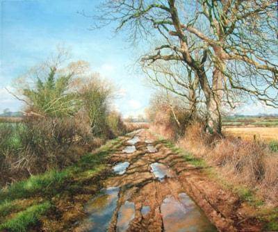 Wet Bridlepath 36 x 30 (oil)