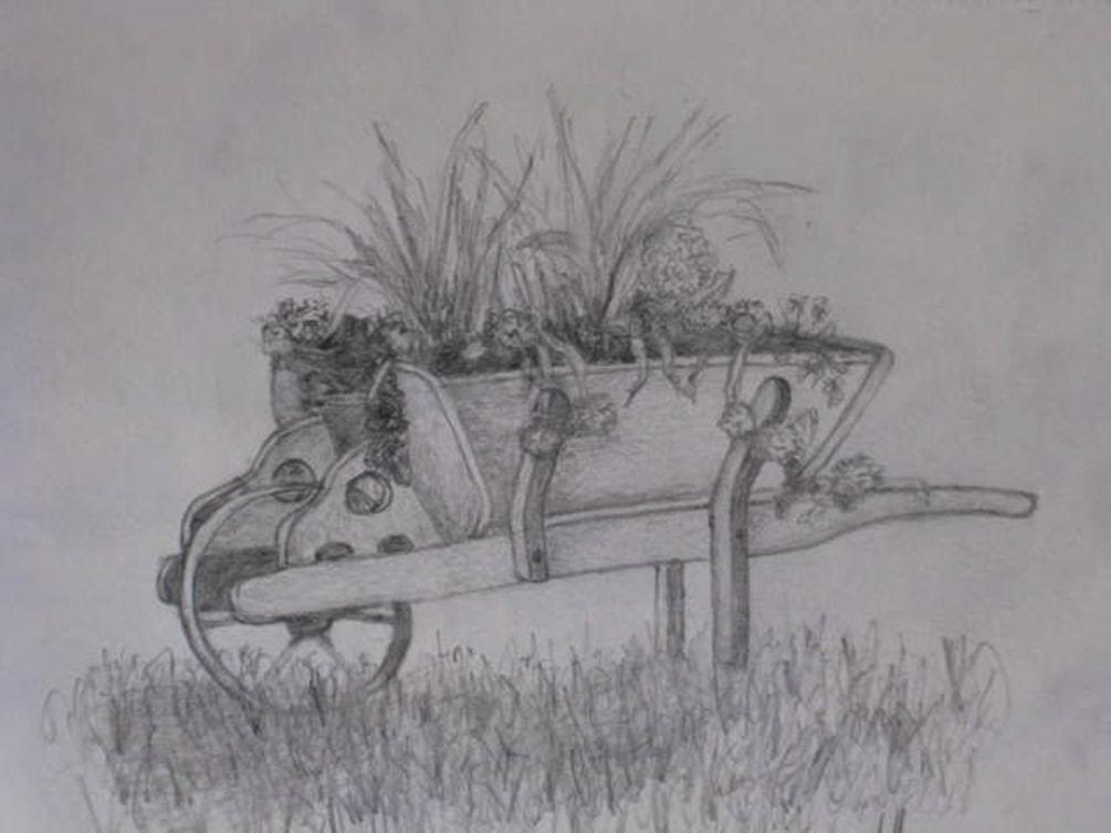 Wheelbarrow of flowers-graphite