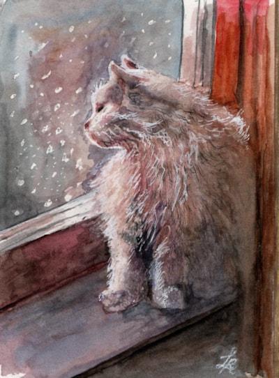 White cat in lockdown