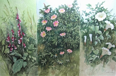 Wildflower triptych