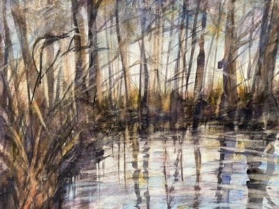 Winter, Flooded Woods