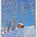 Winter shadows by Margaret Mallows