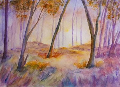 Woodland Dawn 72dpi