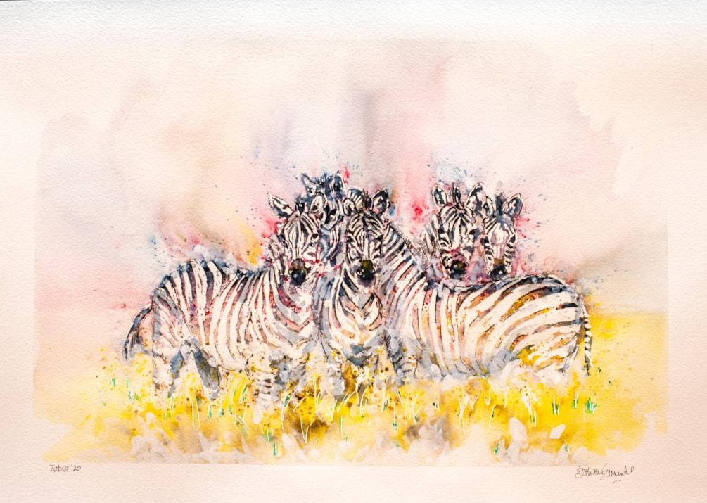 Zebra '21 Low Res-1