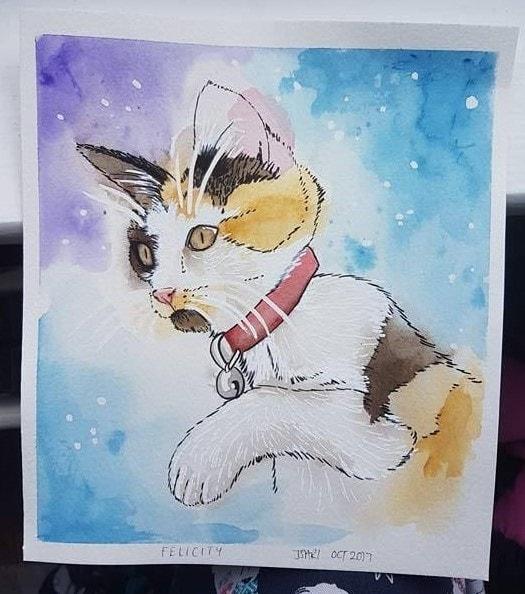 Felicity the cat - watercolour 2017
