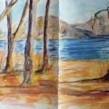EUCALYPTUS TREE 2