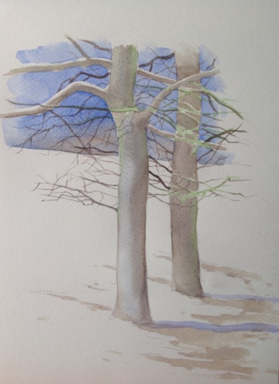 Winter Tree Scene
