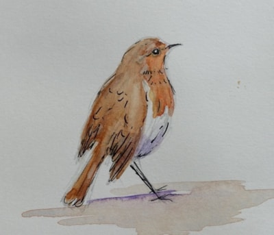 Sketch of a robin