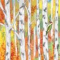 Woodland Woodpecker - iPad Art