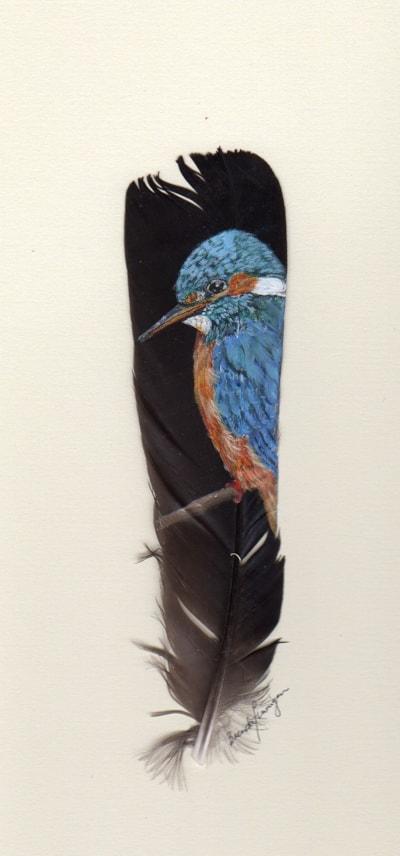 Kingfisher on dark feather