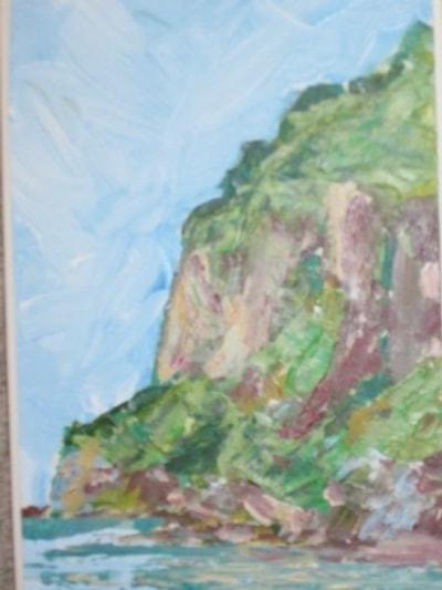 Luccombe cliff IOW